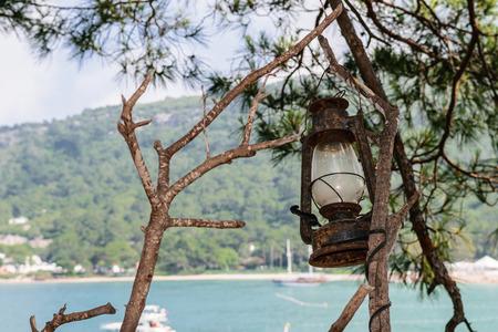 kerosene lamp: Old kerosene lamp weighs on the tree
