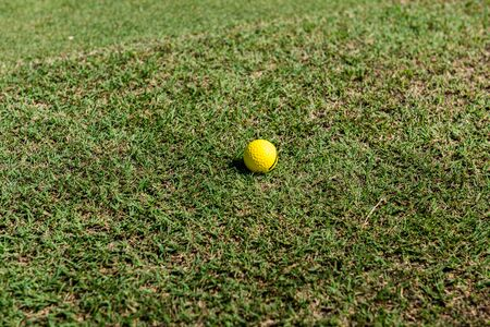 Yellow golf ball lies on a golf course