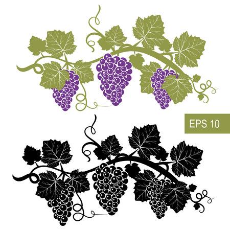 De druiven zijn symbolen. Sjabloon. Vector geïsoleerde tekens. Geïsoleerde witte achtergrond.