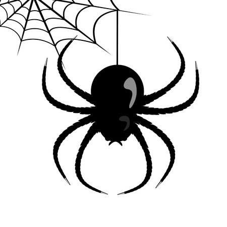 Vector web and huge spider on a white background.