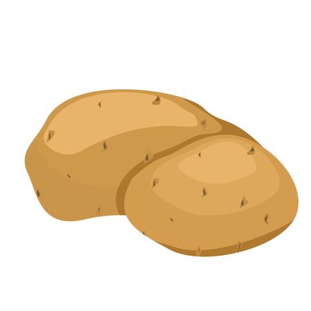 Potatoes illustration isolated on white background.