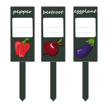 Organic label with green vegetables, large peppers, purple eggplant and red beets. Set of labels for seedlings vector stock. A place for your message. Ilustracja