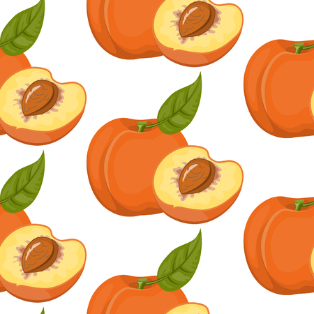 Vector seamless pattern with peaches on white background. Illustration