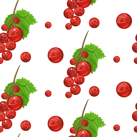 A Seamless vector pattern of red currant fruit. Çizim