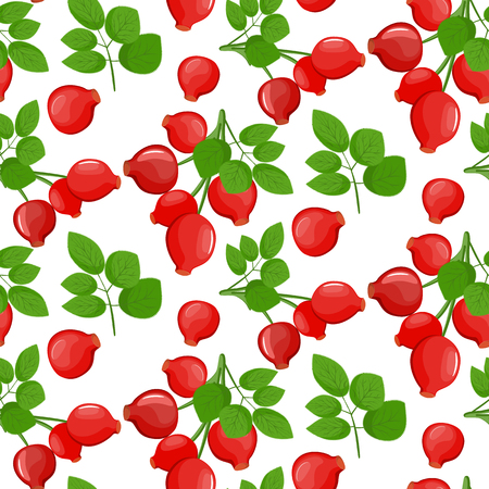 Seamless fabric. A branch of red ripe dog rose with leafs, Rosa canina fruit- line drawing, isolated, colored, icon. Vector stock. Illustration