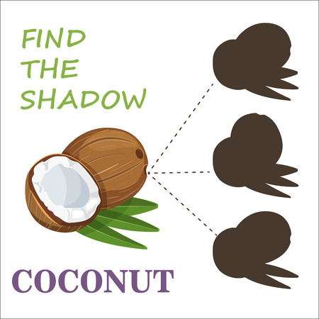 Find the right shade nuts. Set to find the right shadow matching educational baby game to compare and connect objects and their true shadows, simple game level for preschool children. Stock vector. Ilustração