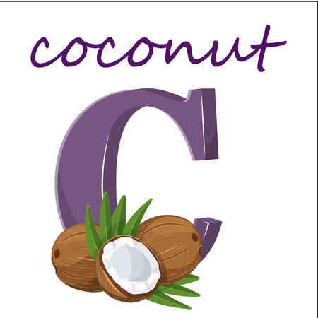 The letter C is a cartoon with coconut. realistic 3D isolated on white background. The colorful nature of the font letters of the alphabet. Decoration origami-have item for children s books. Stock vector.