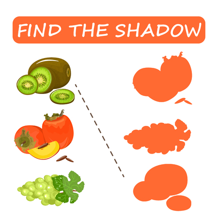Find the right shade of fruit. Kiwi with grapes and persimmon . Set to find the correct shadow matching educational game of the child to compare and connect objects and their true shadows, a simple level of game for preschool children. Stock vector.