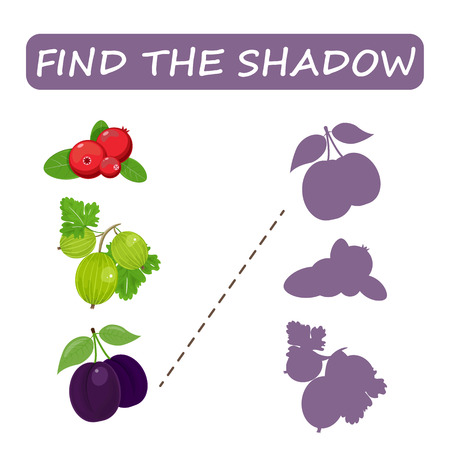 Find the right shade of fruit. Drain the gooseberries . Set to find the correct shadow matching educational game of the child to compare and connect objects and their true shadows, a simple level of game for preschool children. Stock vector.
