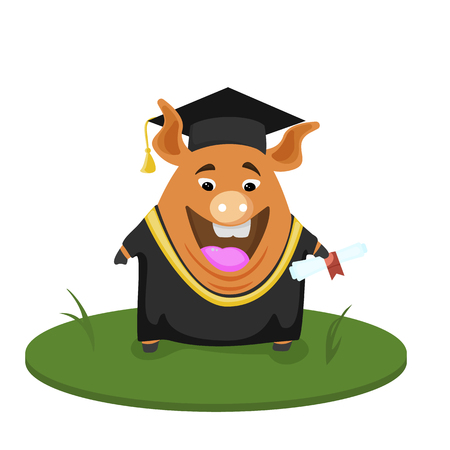 Cute pig student. Back to school illustration.