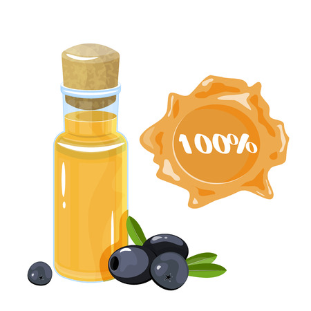 Bottle of olive oil and branch  flat.