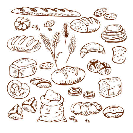 Bread vector hand drawn set illustration. Other types of wheat, flour fresh bread. Gluten food bakery engraved collection. Black bake organic food isolated on white background. 矢量图像