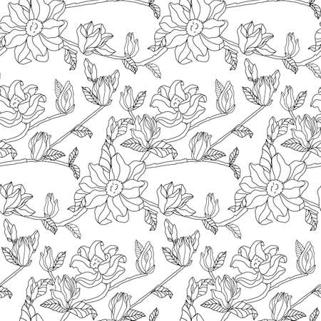 leaves and flowers of magnolia. Seamless background. Hand drawn pictures of nature. Freehand drawing vector illustration.