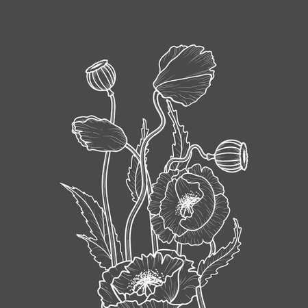 Drawing flowers. Poppy flower clip art or illustration. White line on a gray background.