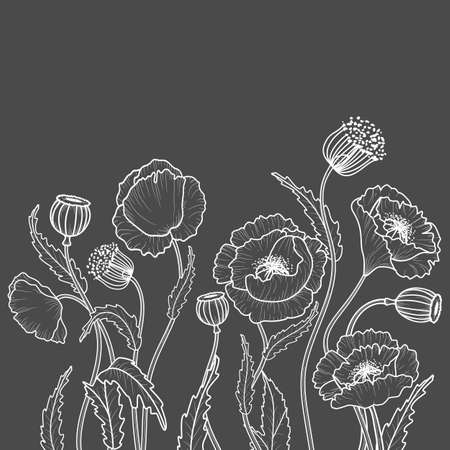 Drawing flowers in white on a gray background. Poppy flower clip art or illustration. 矢量图像