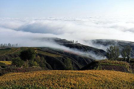 loess: Loess Plateau autumn
