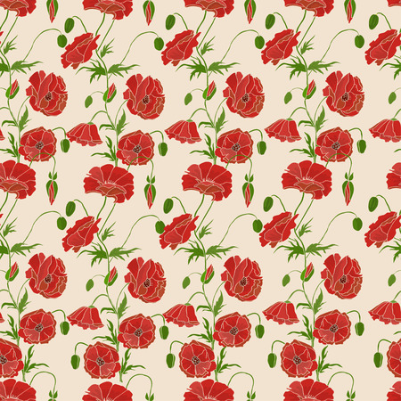 Seamless pattern with red poppy  Vector