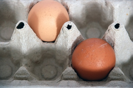 Two eggs, in a box photo