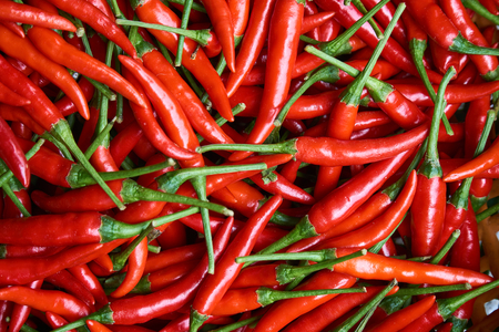 healthful: Organic red chili peppers top view - plan view, full frame. Cooking ingredients.