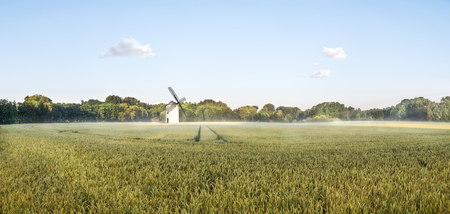 Big Panorama of a grainfield and a windmill in the morning sun with fog. Bayreuth, Germany.