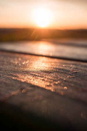 Wood table top against the sunlight with lensflare and golden glow. For product placement or advertisement.