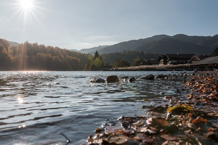The Schliersee in autumn colors in the Bavarian mountains. With autumn leaves in the foreground. Against the sunlight. Standard-Bild