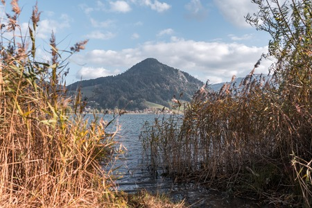 The Schliersee in autumn colors in the Bavarian mountains. With reed in the foreground.