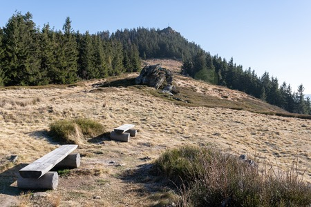 View to the top of die kleiner Osser in the bavarian forest in germany.