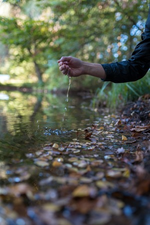 Male hand in a natural lake with autumn leaves. With motion blur. Standard-Bild
