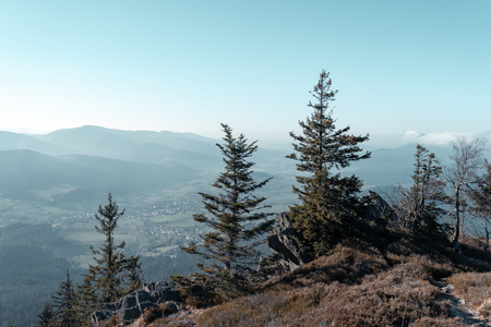 Hiking in the upper bavarian forest in the near of the Osser, germany. Color graded.