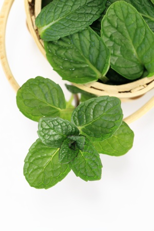 Apple mint of the basket photo