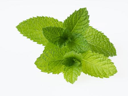Green apple mint isolated on white background Zdjęcie Seryjne
