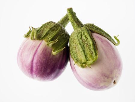 Delicious eggplant called Rosa Bianca