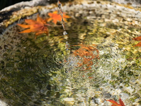 washbowl: Spring water and dead leaves in the Japanese traditional garden washbowl Stock Photo