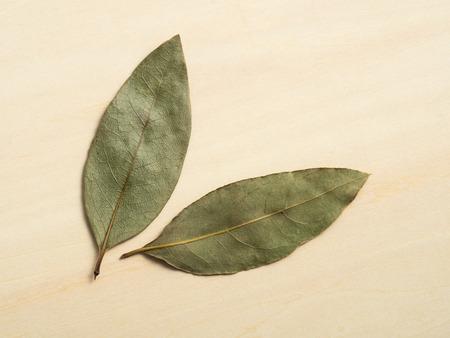 dry leaf: Sweet fragrance dry leaf of  laurel Stock Photo