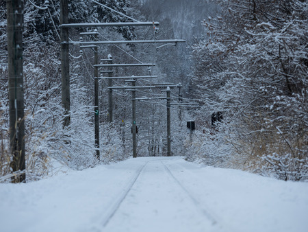 single line: Single line of the snowy district in Nagano, in Japan