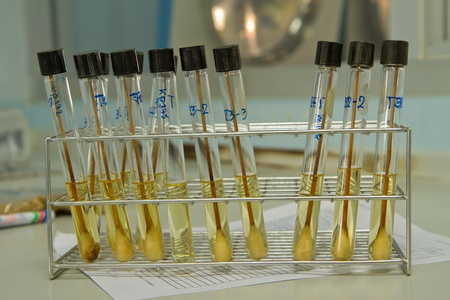 tissue culture test-tube filled with culture media and sample