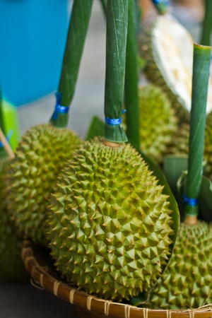 Durian in market photo
