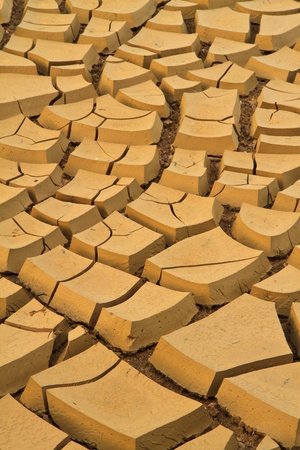 field of baked earth after a long drought  photo
