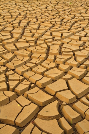 field of baked earth after a long drought  Stock Photo
