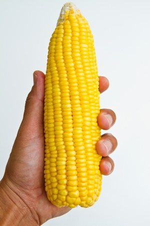 fresh corn on white background and hand