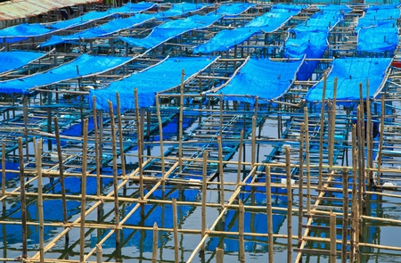 fish farming Stock Photo