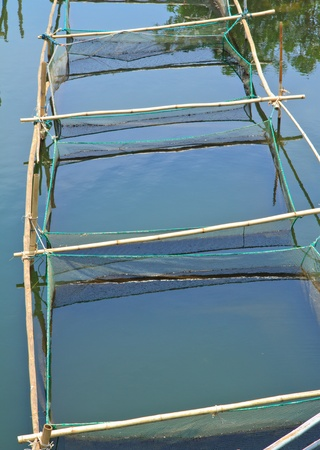 fish farming Stock Photo