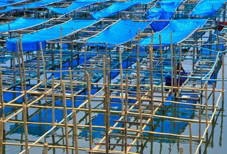pisciculture: fish farming Stock Photo