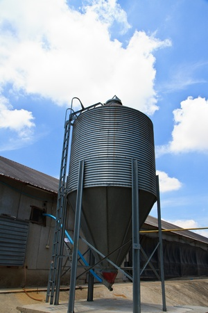 feed silo and chicken house Stock Photo - 13508028