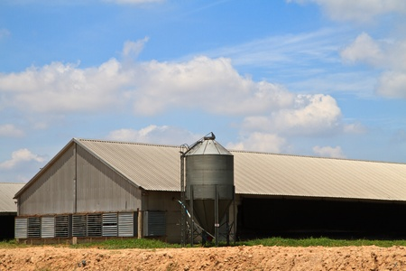 feed silo and chicken house