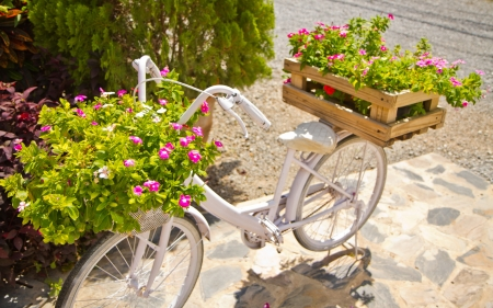 white bicycle and flowers