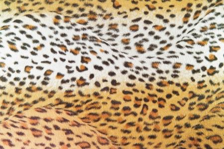 texture leopard