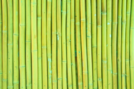 bamboo background Stock Photo - 14361541
