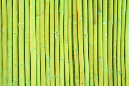 bamboo background Stock Photo - 14361541